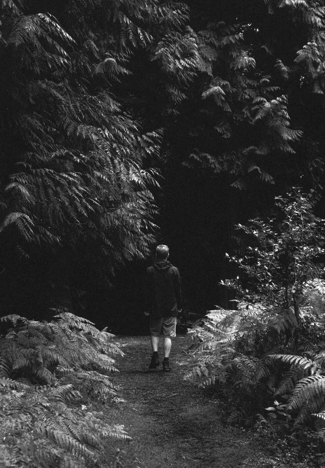 Man walking in dark forest