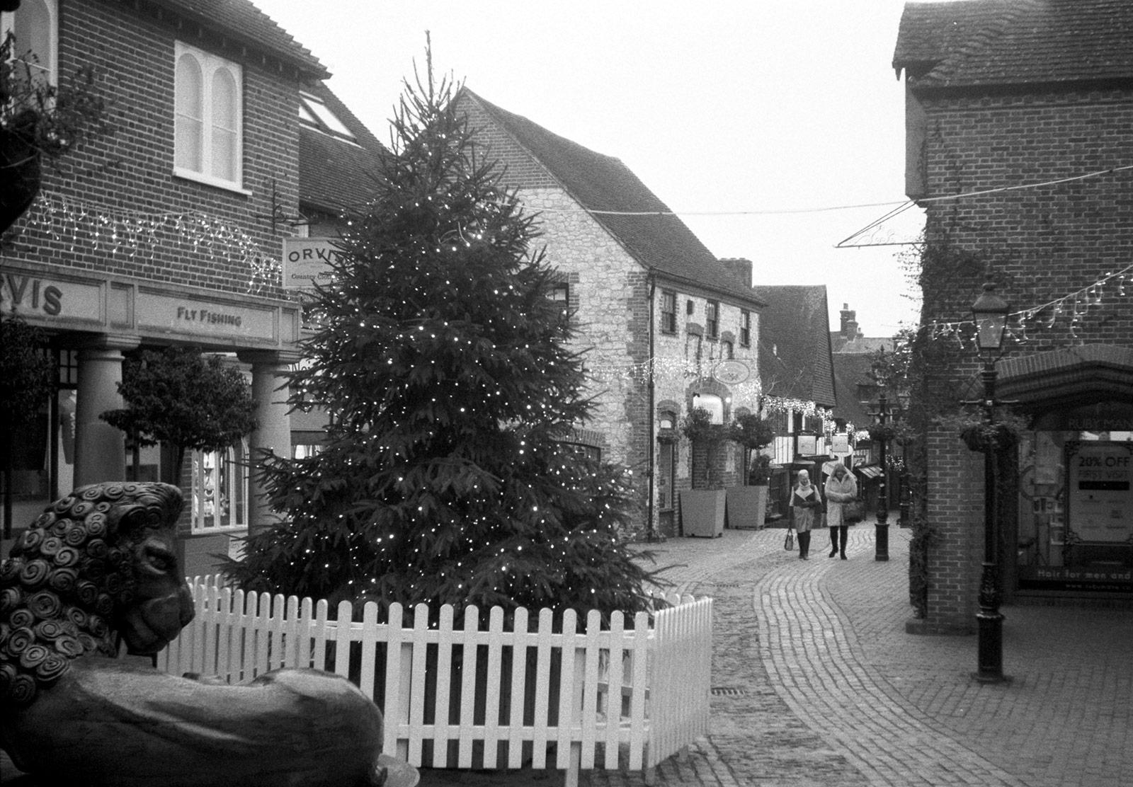 Christmas tree on cobbled street