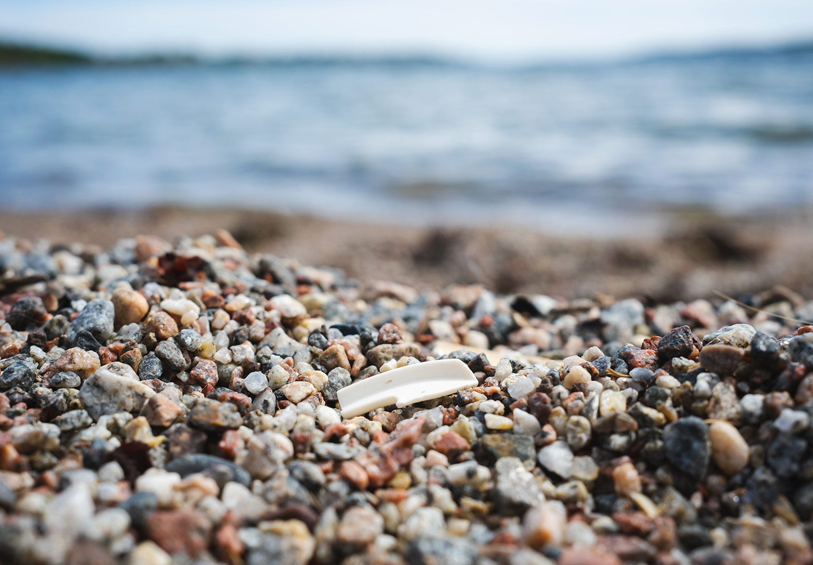 Piece of white plastic on sand