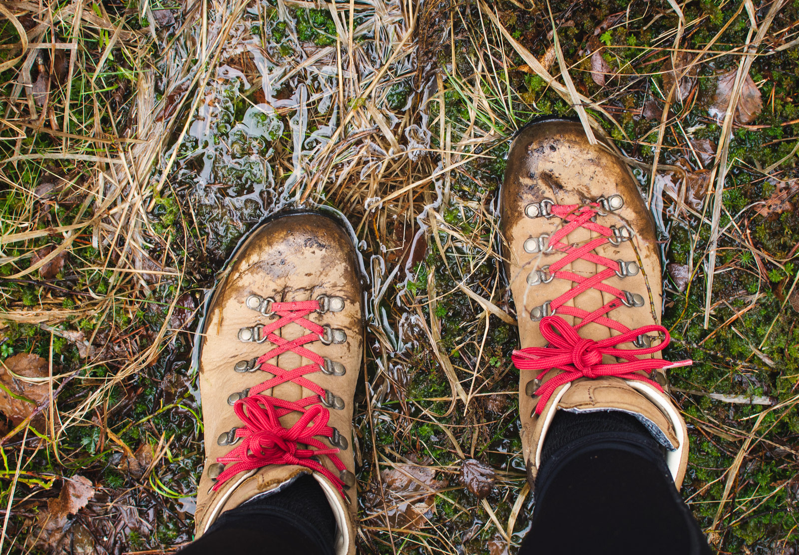 Hiking boots on boggy ground