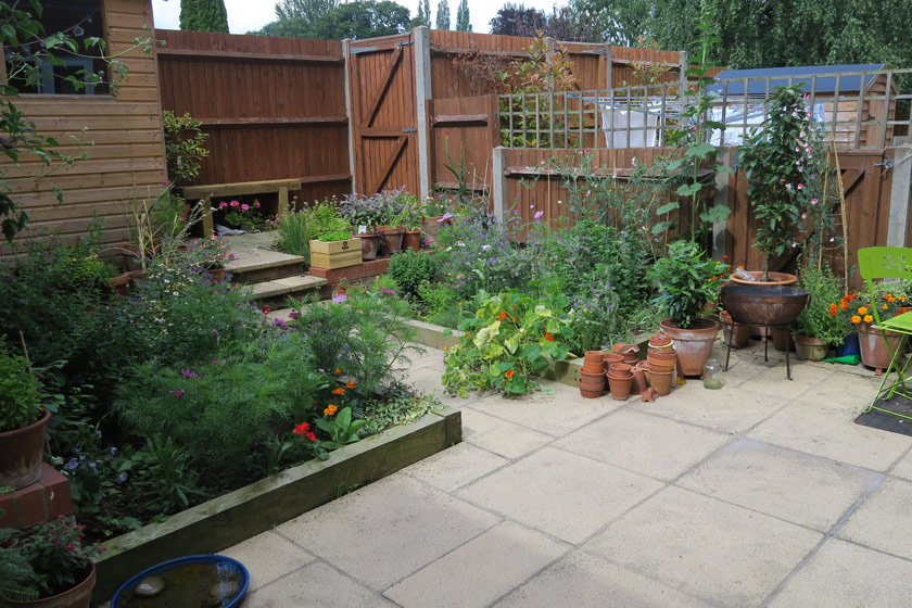 View of back garden