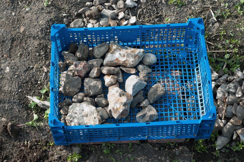 Stones in blue plastic crate