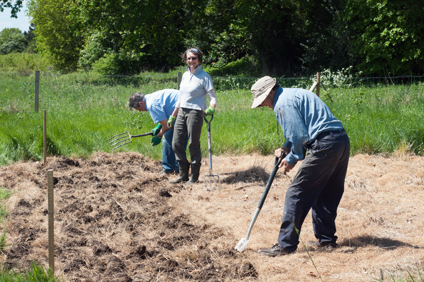 Volunteers digging over ground