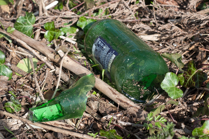 Broken bottle in grass