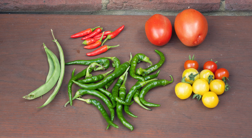 Green chillies and tomatoes