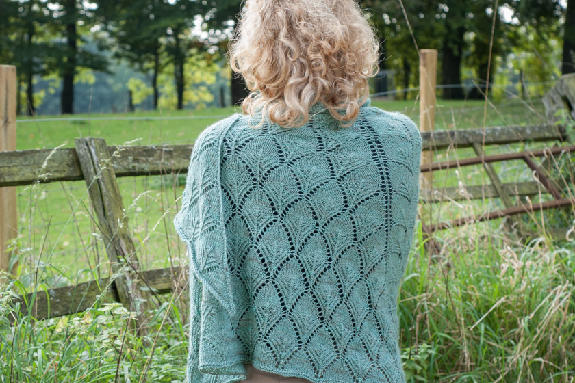 Shawl pattern from the back