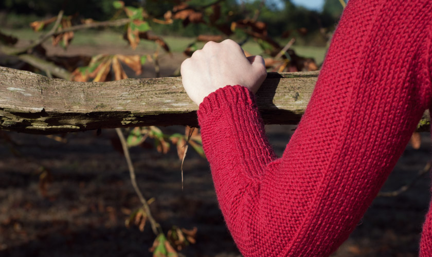 Red Flax pullover with arm details
