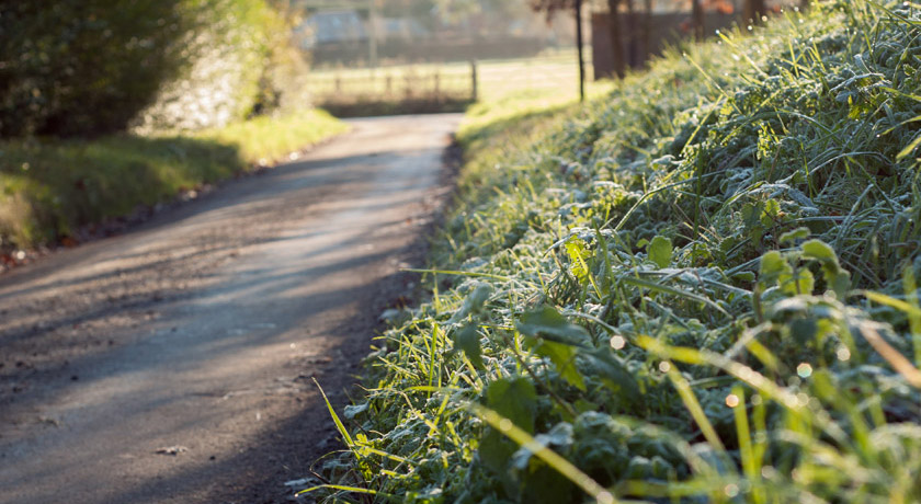 Frosty country lane