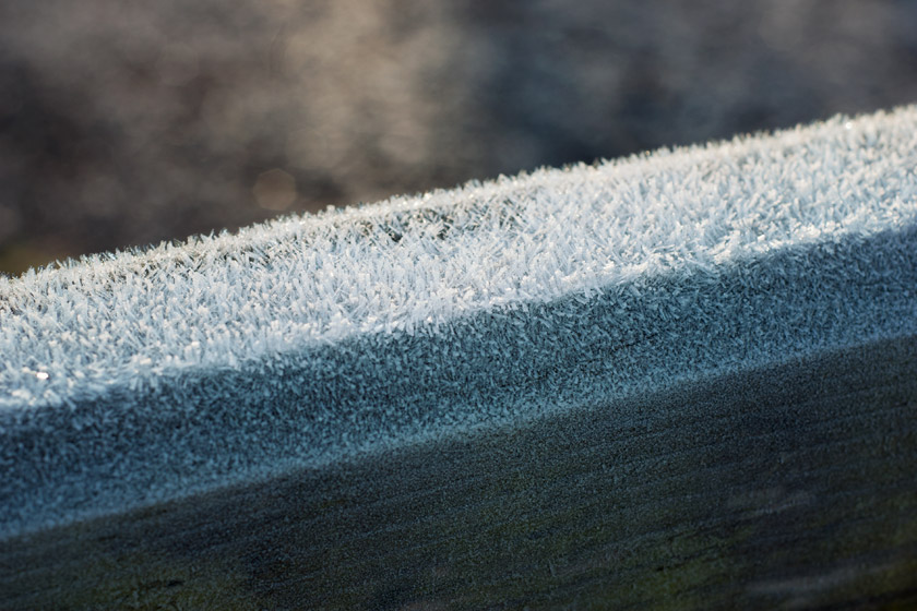 Gate covered in frost