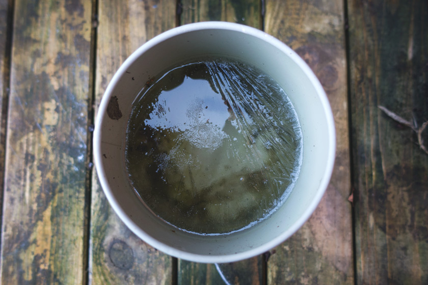 Ice in pot