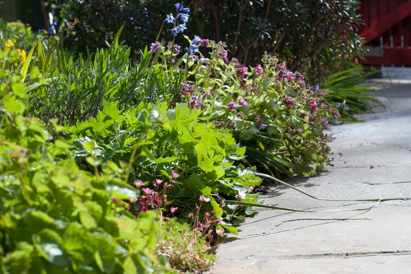 Ground level garden path