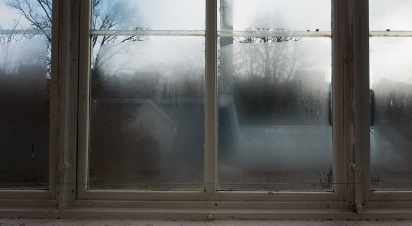 Steamy glasshouse windows