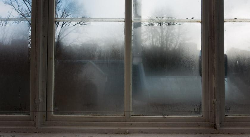 Steamy glasshouse windows
