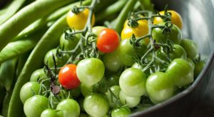 Pan of green tomatoes