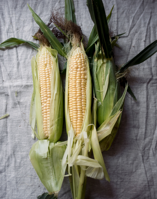 Homegrown sweetcorn cobs