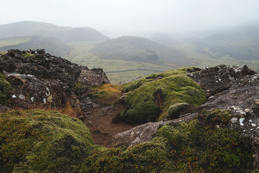 Foggy lava field