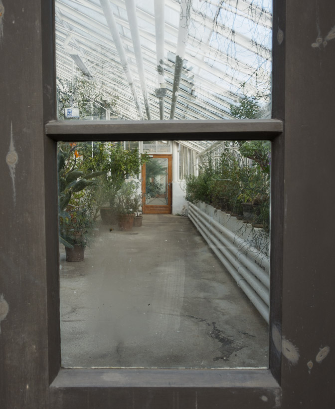 View through door