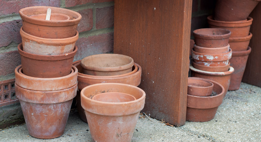 Terracotta pots under bench