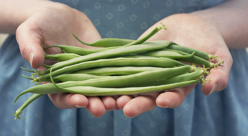 Handful of green beans