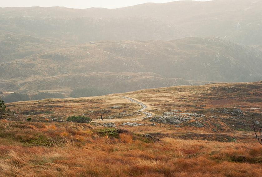 Orange mountain landscape