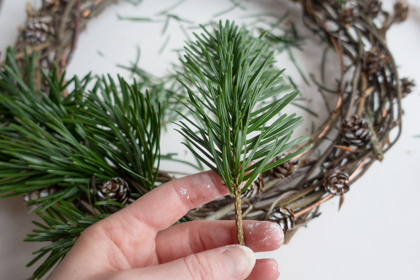Hand holding pine offcut