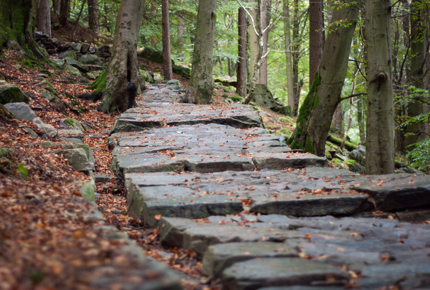 Stone steps on mountain