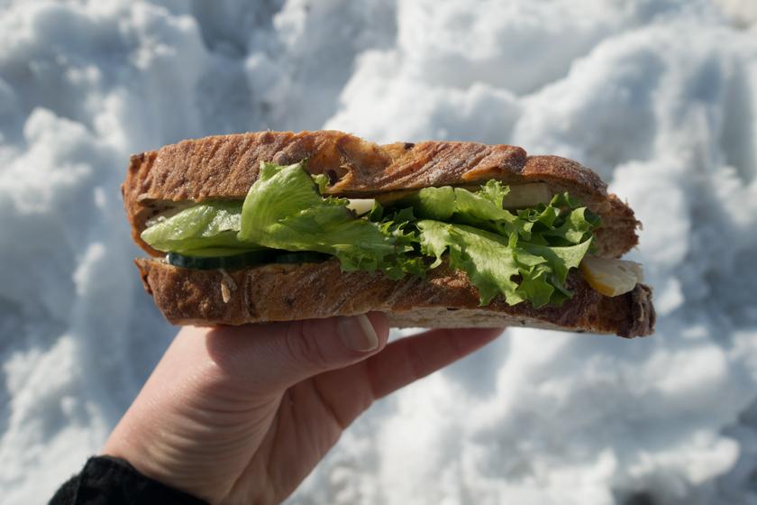 Sandwich in hand