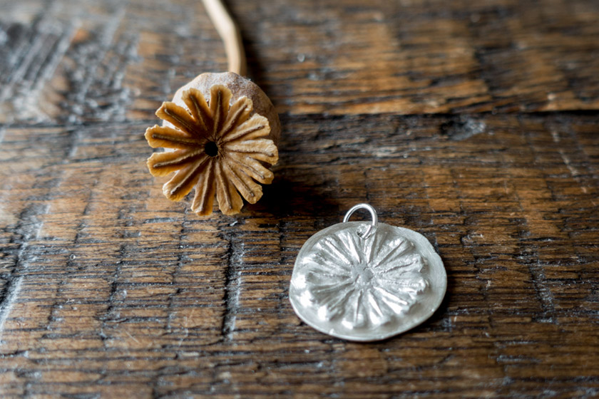 Seed head next to pendant