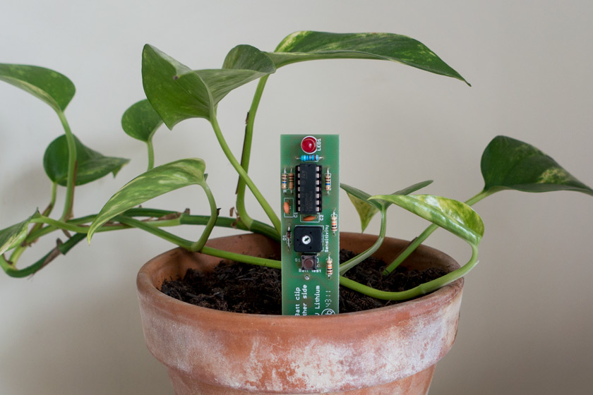 Plant monitor in pot