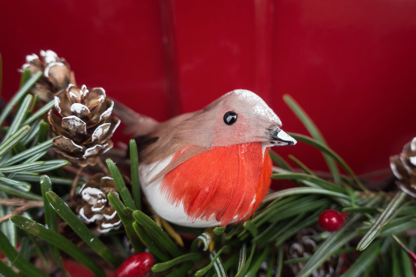 Closeup of robin on wreath