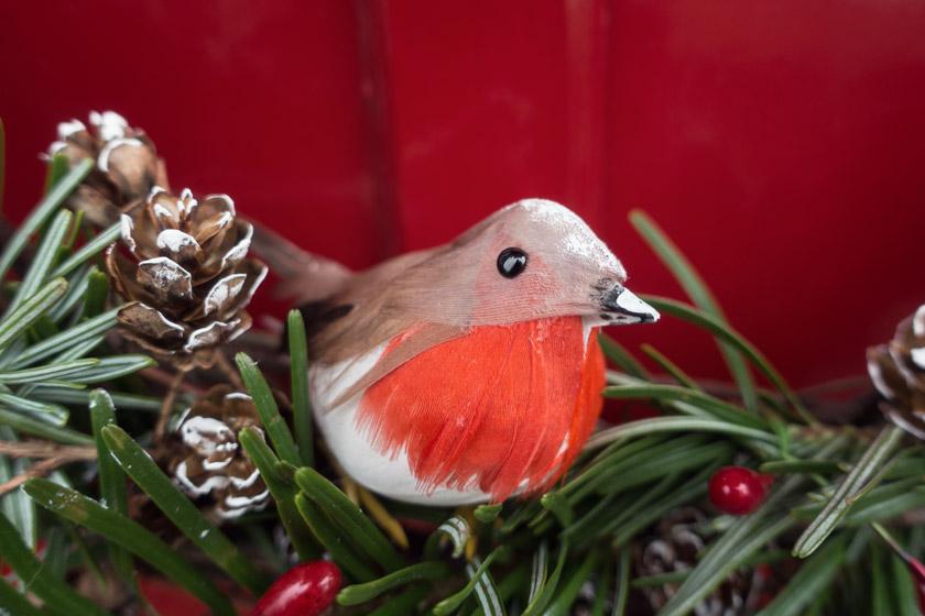 Closeup of robin on wreath