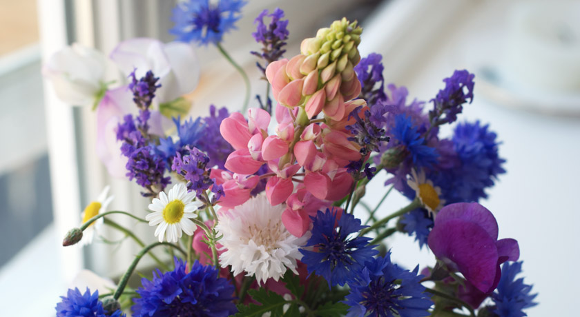 Pink and blue cut flower bouquet