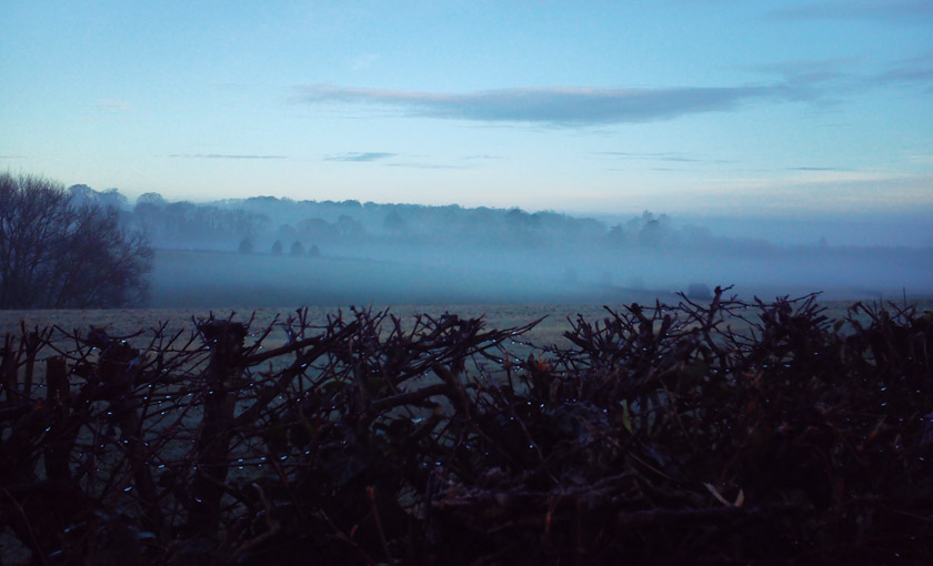 Mist hanging over fields