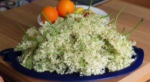 Elderflower and citrus fruit on table