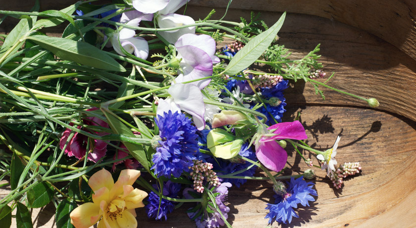 Cut flowers in my trug