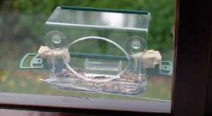 Meripac feeder attached to a window