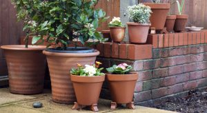 Mismatching terracotta pots