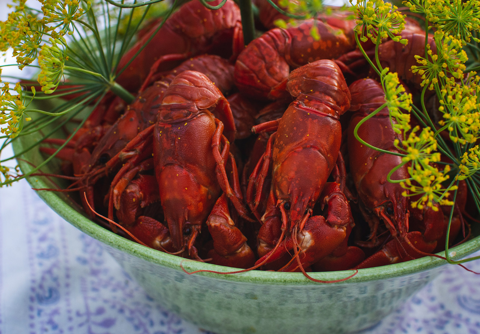 Bowl of crayfish
