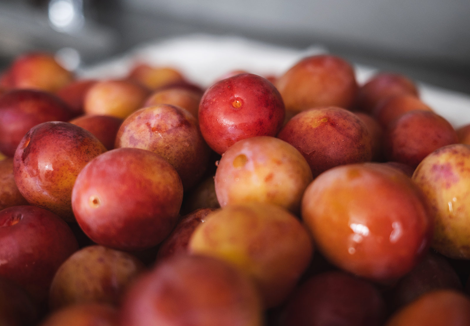 Pile of red plums