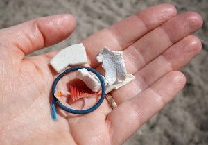 Plastic waste in hand