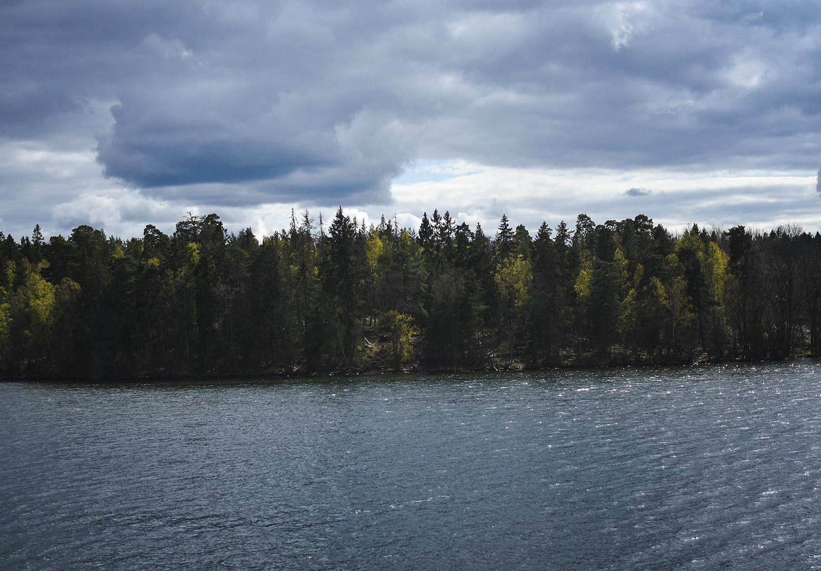 Tree lined lake
