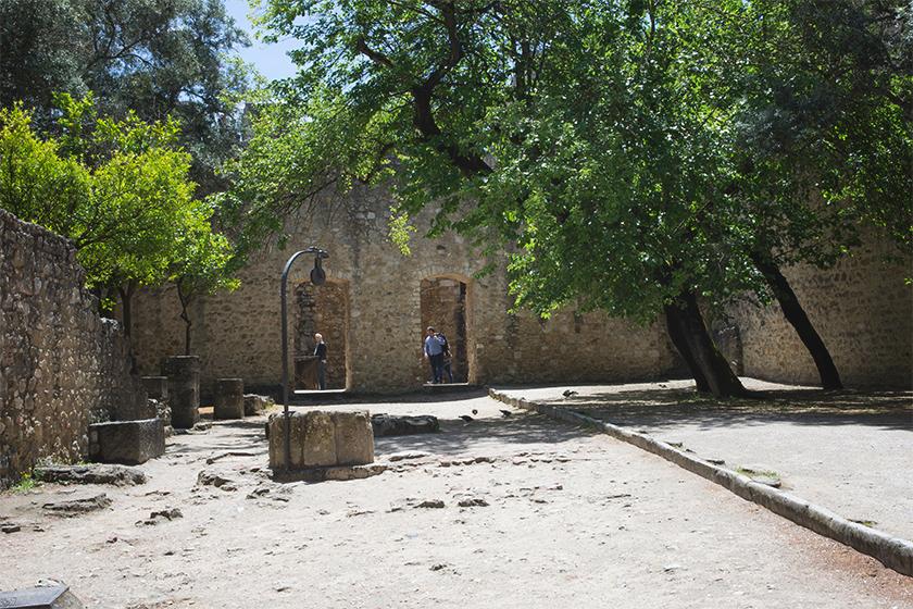 Leafy stone courtyard