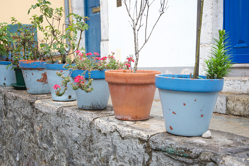 Terracotta pots on a wall