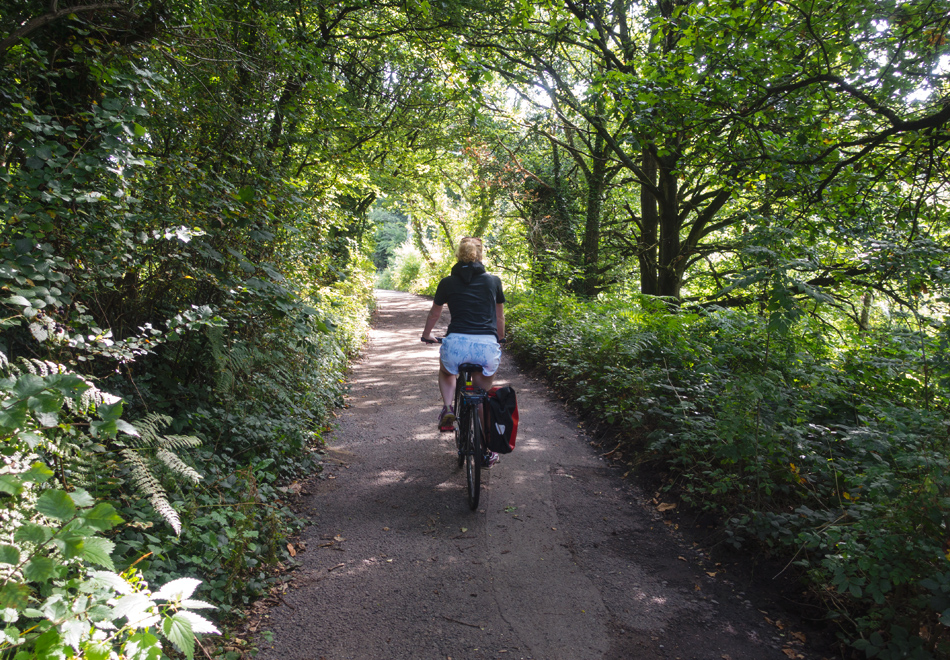 Cycling on a leafy road