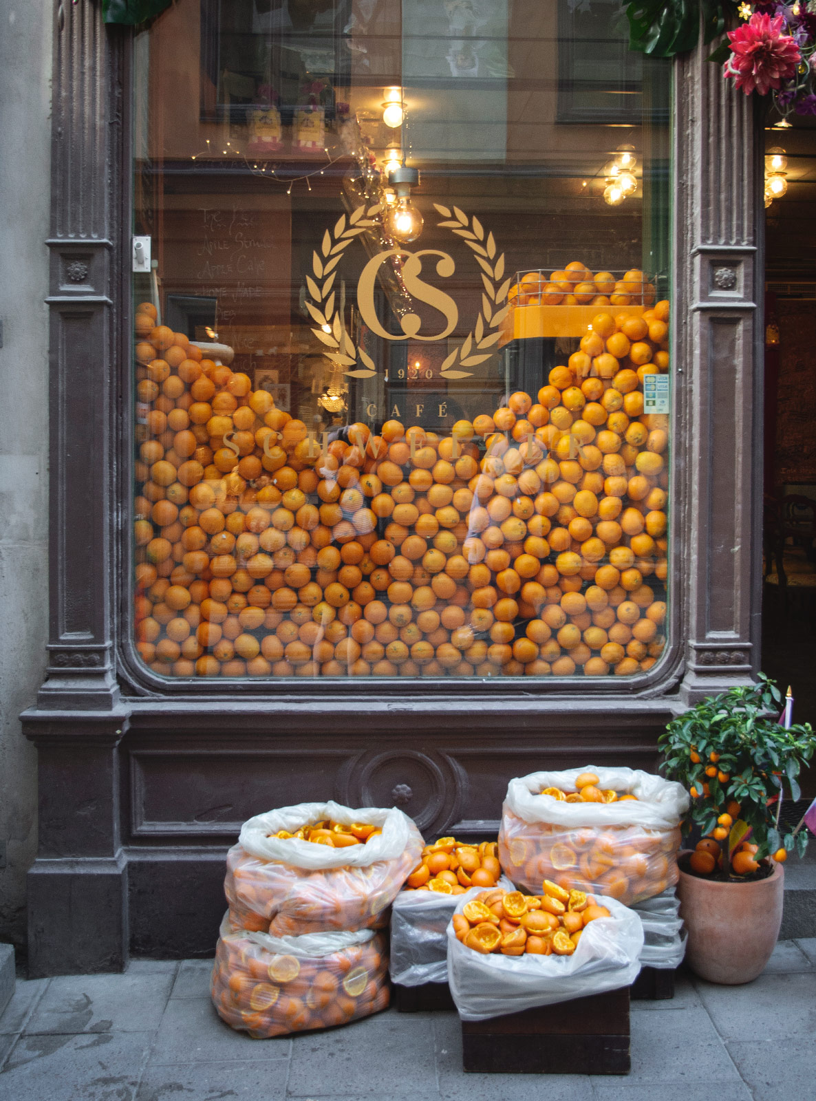 Oranges in cafe window