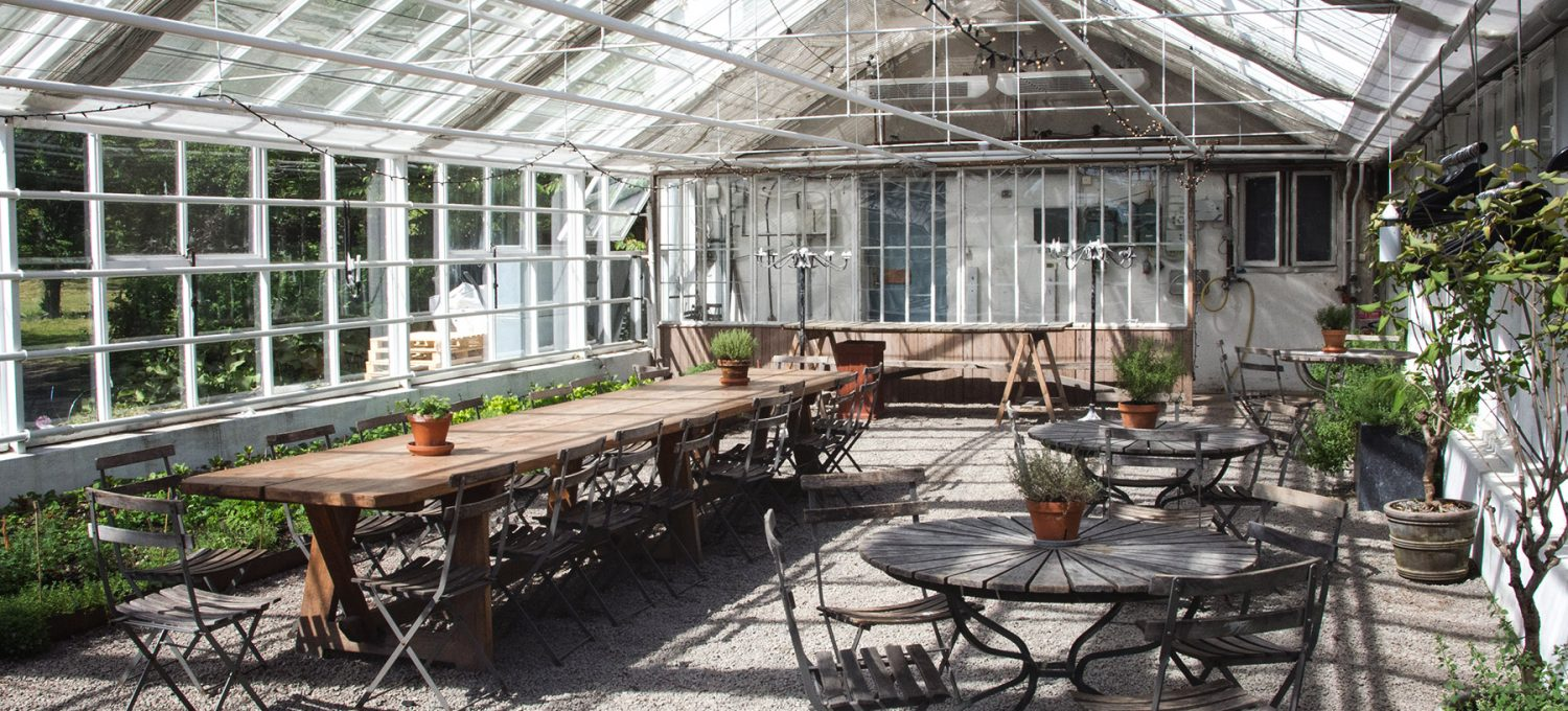 Tables in greenhouse