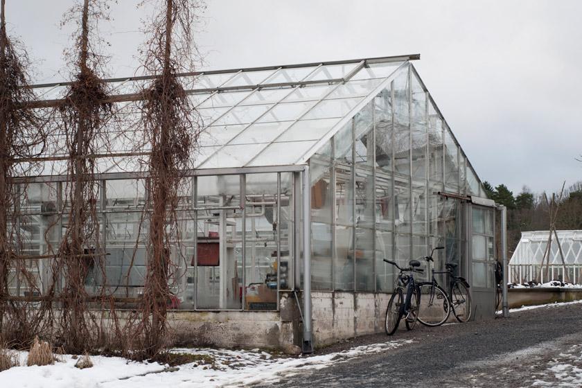 Rosendals Tradgard greenhouse