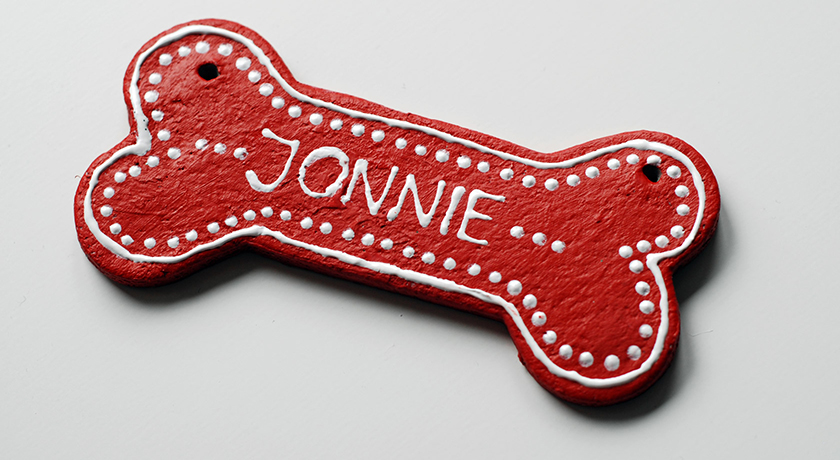 Red bone dog ornament