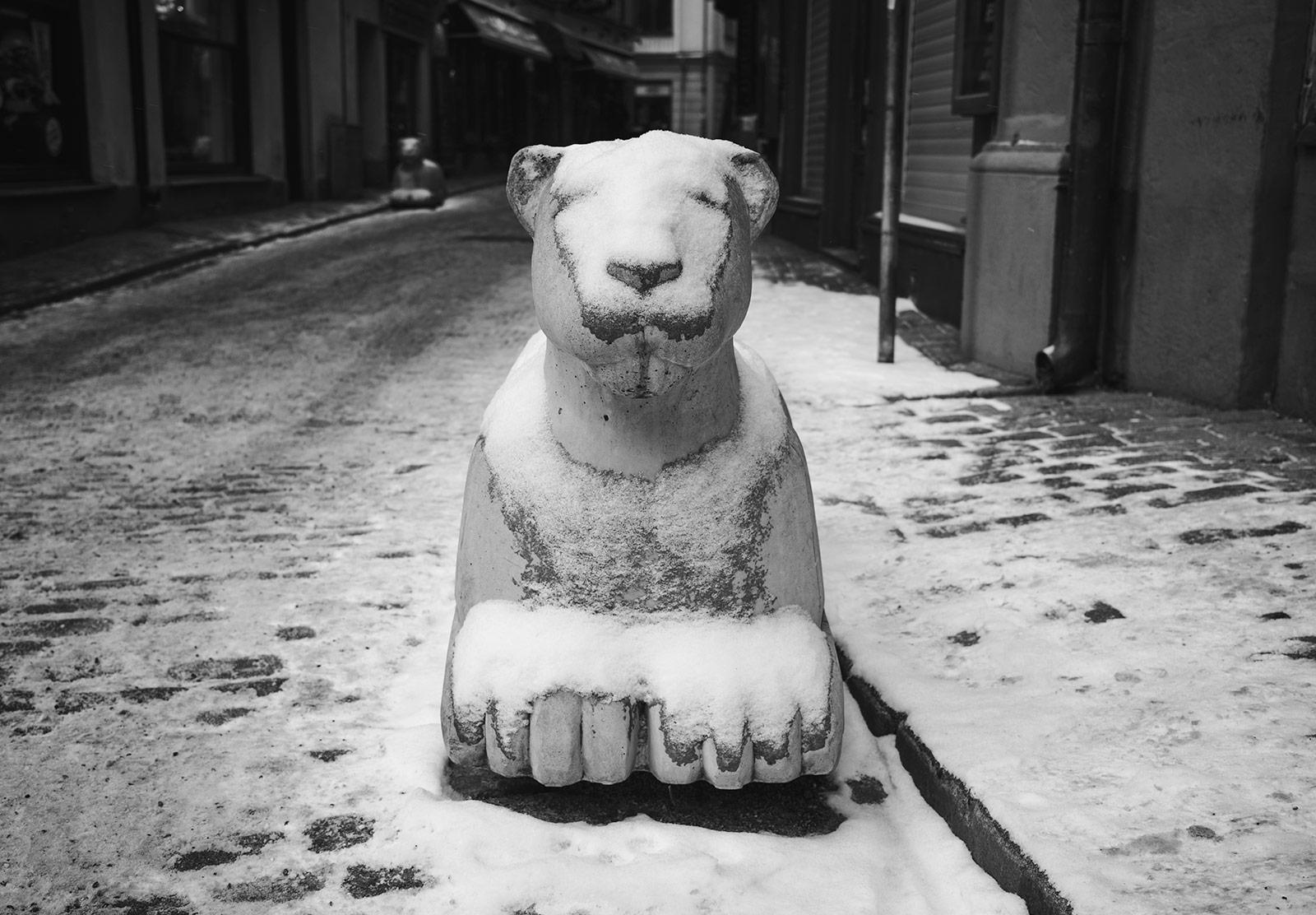 Snow on concrete lion