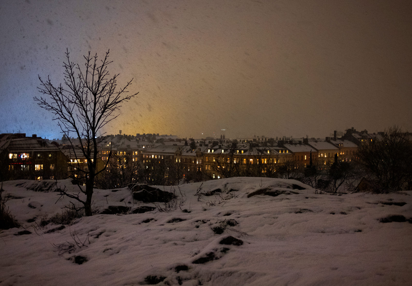 View of snow on rooftops
